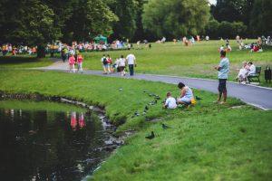 Park with a pond