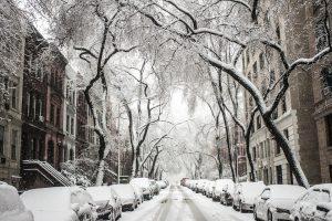 A snowy street in Brooklyn