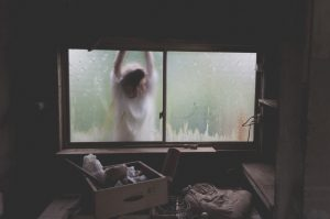 A woman looking through the garage window